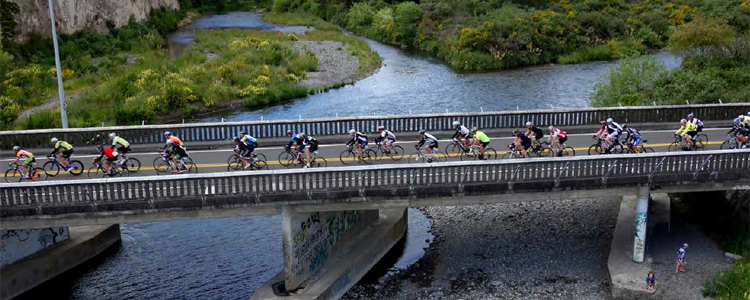 Contact Lake Taupo Cycle Challenge, NZ Bike Tours and Holidays
