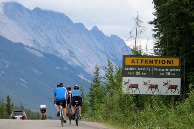 Canadian Rockies Bike Tour